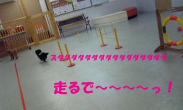 Image030_1_6
