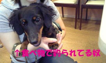 Image034_1_3