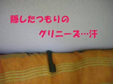 Alto_094